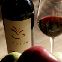 ventus şarap, kırmızı şarap